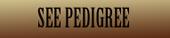 pedgreebutton2